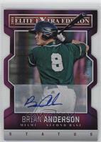 Brian Anderson /75
