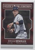 Brian Schales