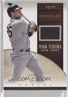 Mark Teixeira #/49