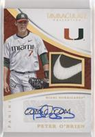 Peter O'Brien [EX to NM] #/1