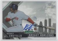 Rusney Castillo /50