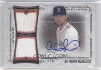 Anthony Ranaudo /299