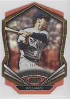 Ted Williams #/25