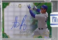 Anthony Rizzo [Uncirculated] #/99