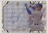 Anthony Rizzo #/189