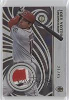 Joey Votto #/45