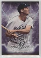 Ted Williams #/354