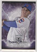 Anthony Rizzo #/354