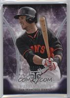 Buster Posey /354