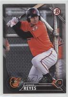 Top Prospects - Jomar Reyes #223/499