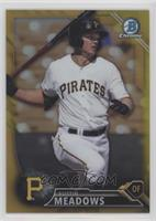 Top Prospects - Austin Meadows #/50