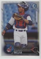 Top Prospects - Francisco Mejia