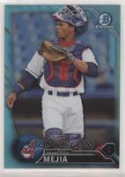 Top Prospects - Francisco Mejia [EX to NM]