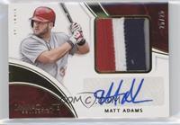 Matt Adams /25