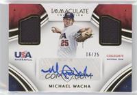 Michael Wacha /25