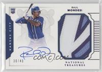 Rookie Materials Signatures - Raul A. Mondesi #/49