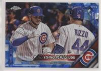 Young Cubs Buds /250