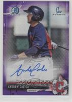 Andrew Calica [Noted] #/250