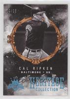 Cal Ripken /25