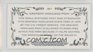 Grayson-Highland-Pony.jpg?id=442aabb9-59b2-42eb-b864-8e606985ced1&size=original&side=back&.jpg