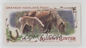 Grayson-Highland-Pony.jpg?id=442aabb9-59b2-42eb-b864-8e606985ced1&size=original&side=front&.jpg