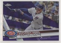 Anthony Rizzo /299
