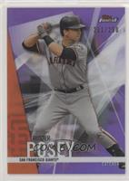 Buster Posey /250