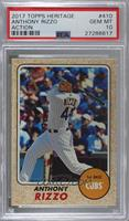 High Number SP - Anthony Rizzo (Action Image Variation) [PSA 10 GEM&n…