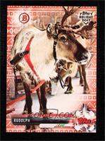 Rudolph #/10