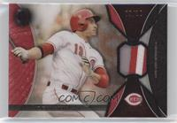 Joey Votto #/10