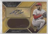 Amir Garrett /25