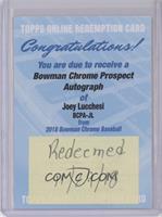 Joey Lucchesi [BeingRedeemed]