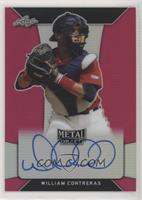 William Contreras /20