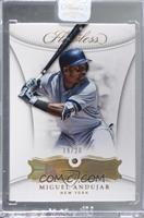 Miguel Andujar [Uncirculated] #/20