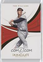 Ted Williams /99