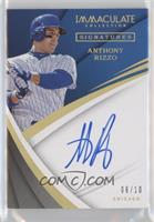 Anthony Rizzo #/10