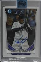 Raimel Tapia (2014 Bowman Chrome Prospects) /99 [Buy Back]