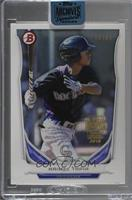 Raimel Tapia (2014 Bowman Top Prospects) /99 [Buy Back]