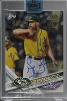 Sean Doolittle (2017 Topps Opening Day) [Buy Back] #/99