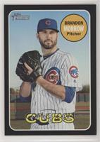 Brandon Morrow /50