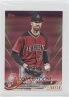 Robbie Ray #/25