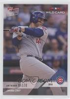 Anthony Rizzo #/455