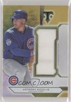 Anthony Rizzo #3/9