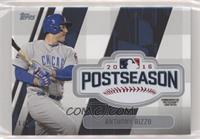 Anthony Rizzo #/1