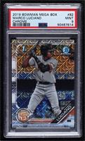 Marco Luciano [PSA9MINT]
