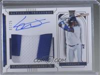 Rookie Material Signatures - Vladimir Guerrero Jr. #/25