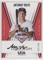 Anthony Volpe #/499