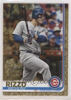 Anthony Rizzo #/2,019