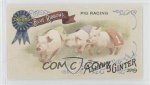 Pig-Racing-Contest.jpg?id=a6177499-a898-4bd0-8874-0e55b2b626be&size=original&side=front&.jpg