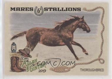 Thoroughbred-Horse.jpg?id=87bc3b33-bb83-47a7-9f12-df7f2c80699f&size=original&side=front&.jpg